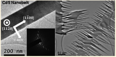 Real-Time Observation of Morphological Transformations in II–VI Semiconducting Nanobelts via Environmental Transmission Electron Microscopy